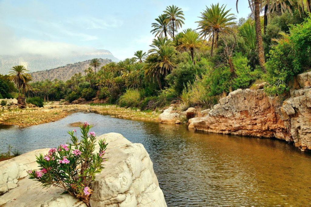Tourist arrivals to Morocco up 9 pct in first half of 2017