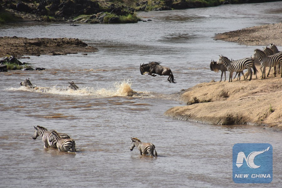Kenya targets 100,000 Chinese tourists yearly