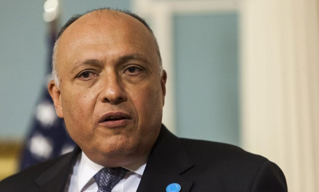Shoukry lauds Egypt's strategic ties with China