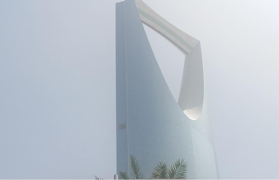 SaudiArabia's Tadawul stockmarket rose more than 8 per cent in 2018.
